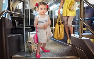 dress, look, dog, children, girl, child, shoes