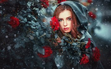 снег, девушка, розы, взгляд, модель, капюшон, рыжеволосая, ольга бойко