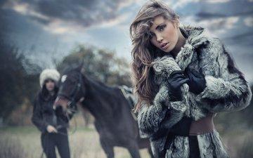 лошадь, взгляд, девушки, волосы, лицо, макияж, конь, модели, шубка