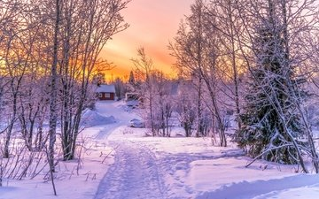 road, trees, snow, sunset, winter, landscape, house, beautiful