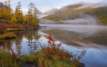 trees, lake, mountains, forest, reflection, morning, fog, autumn, vladimir ryabkov
