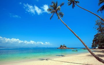 sea, sand, beach, palm trees, stay, island, tropics