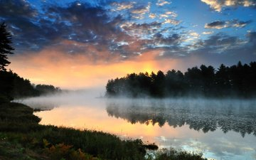 clouds, trees, river, nature, forest, sunset, landscape, fog