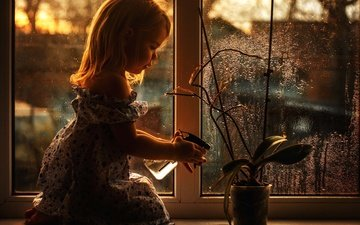 платье, цветок, капли, взгляд, дети, волосы, лицо, ребенок, окно, стекло, горшок, полив, gевочка
