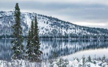 озеро, снег, дерево, зима, гора, он