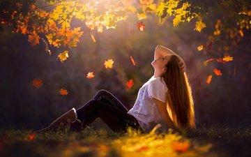 трава, деревья, листья, девушка, поза, осень, клен, листопад, солнечные лучи, длинные волосы
