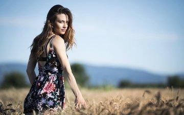 платье, поле, лето, взгляд, модель, лицо, erika