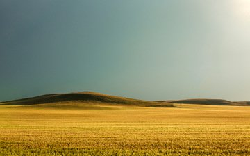 the sky, nature, field, horizon, usa, wheat, hill, montana, todd klassy