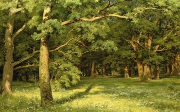 trees, nature, picture, landscape, forest glade, ivan shishkin