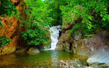 rocks, nature, branches, waterfall, stream