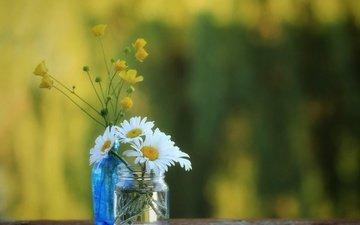 ромашки, полевые цветы, банка, бутылочка, боке, лютики