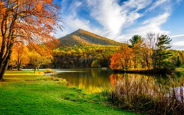 grass, trees, lake, mountain, autumn