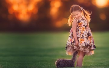 grass, nature, mood, dress, cat, girl, child, animal, bokeh, tails