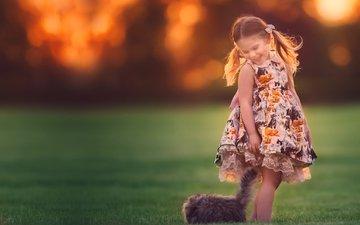 трава, природа, настроение, платье, кот, кошка, девочка, ребенок, животное, боке, gевочка, хвостики