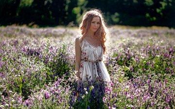 цветы, девушка, платье, поле, лето, взгляд, волосы, лицо, mwl photo