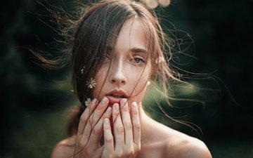 солнце, природа, девушка, портрет, лето, модель, ромашки, волосы, лицо, длинные волосы, вера, георгий чернядьев