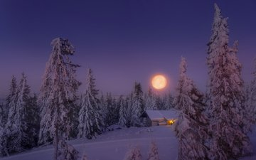 the sky, light, trees, snow, forest, winter, the moon, house