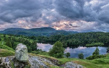 lake, mountains, forest, panorama, england, stone, the lake district, lake district national park, cumbria, tarn hows