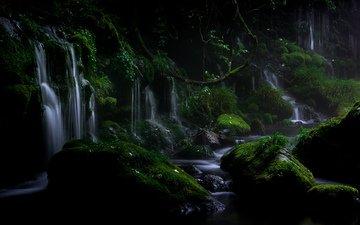вода, природа, камни, растения, листья, пейзаж, водопад, мох, akihiro shibata