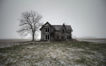 nature, tree, field, house