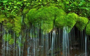 waterfall, usa, moss, va, national park, shenandoah, virginia, shenandoah national park