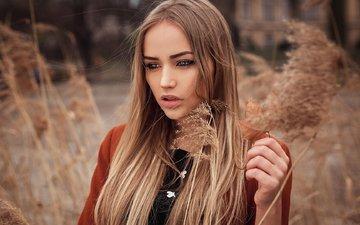 plants, girl, look, model, spikelets, face, long hair, masha, richard vojcehovszkij