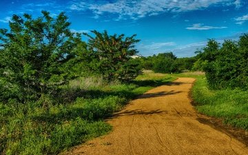 the sky, road, grass, clouds, trees, shadow, usa, texas