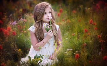 flowers, mood, girl, child, wildflowers