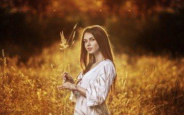 портрет, брюнетка, осень, модель, колоски, белое платье, длинные волосы, солнечный свет