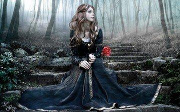 trees, forest, ladder, steps, girl, rose, sitting, black dress, tear