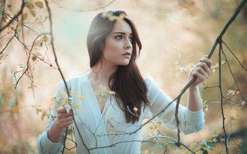 girl, mood, branches, look, hair, face, jose macias