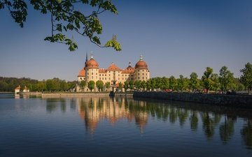 water, reflection, branches, castle, germany, saxony, moritzburg, moritzburg castle