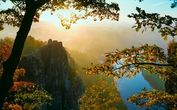 trees, rocks, fog, branches, autumn, switzerland, valley