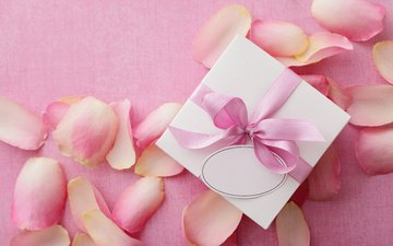 petals, gift, valentine's day, 14 feb