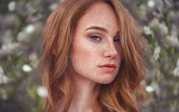 девушка, взгляд, волосы, губы, лицо, веснушки, длинные волосы