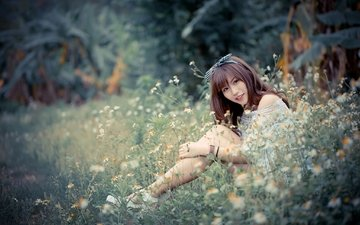 flowers, grass, girl, look, legs, chamomile, hair, face, asian, bokeh