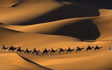 песок, люди, пустыня, караван, верблюды