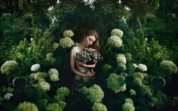 flowers, nature, girl, garden, model, plant, hydrangea, bella kotak