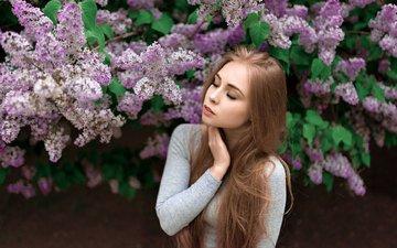 цветение, девушка, блондинка, модель, весна, сирень, длинные волосы, закрытые глаза
