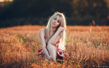 girl, dress, blonde, field, look, model, sitting, sergio banderas