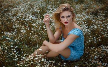 природа, девушка, платье, поле, лето, взгляд, ромашки, волосы, лицо, сидя, дамиан piórko