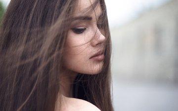 девушка, взгляд, модель, волосы, лицо