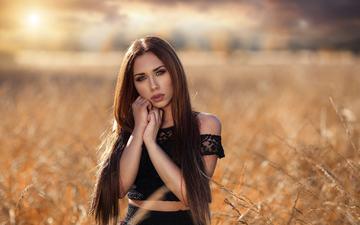 девушка, портрет, взгляд, волосы, лицо, длинные волосы, алессандро ди чикко