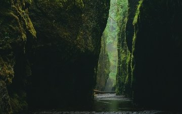 water, stones, canyon, gorge, moss