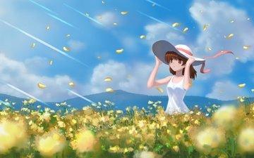 clouds, field, petals, hat, clannad, furukawa nagisa