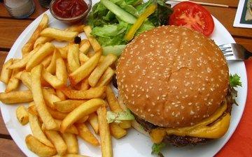 hamburger, ketchup, plug, vegetables, sauce, salad, french fries