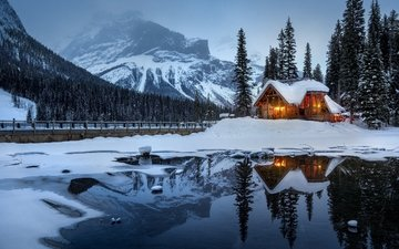 night, trees, lights, lake, snow, house