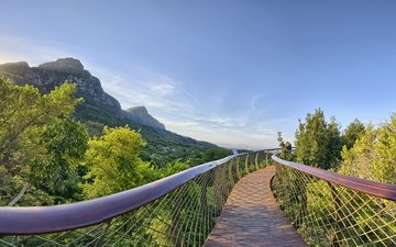 the sky, trees, mountains, nature, bridge, the sun's rays, cape town, south africa, kirstenbosch national botanical garden