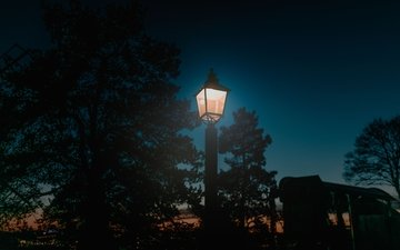 light, night, trees, street, lantern, post