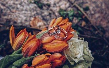 розы, романтика, букет, тюльпаны, кольца, свадьба, праздник